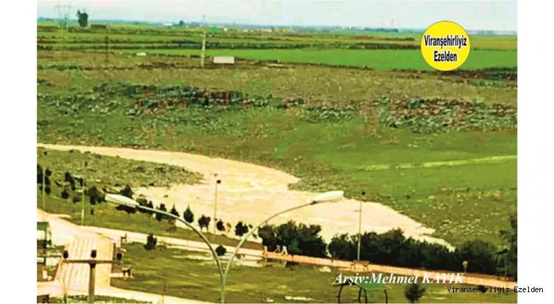 Viranşehir Curcup Bölgesi