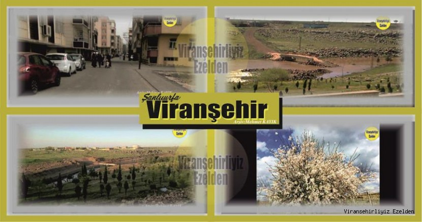 Viranşehir'den Manzaralar