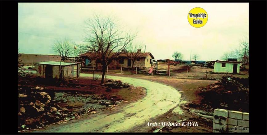 Viranşehir Şemmok Köyü